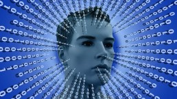 Intellio - Professional IT recruitment and Hiring solutions